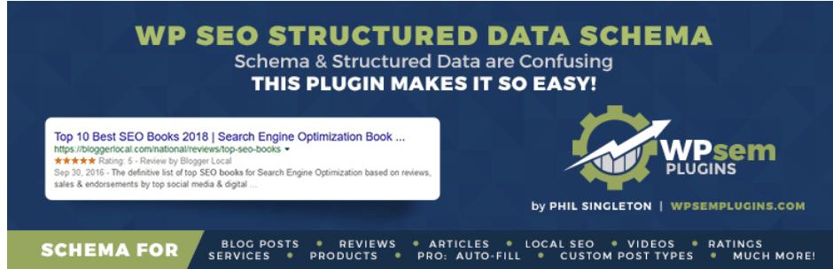 WP SEO Structured Data LogoSchema