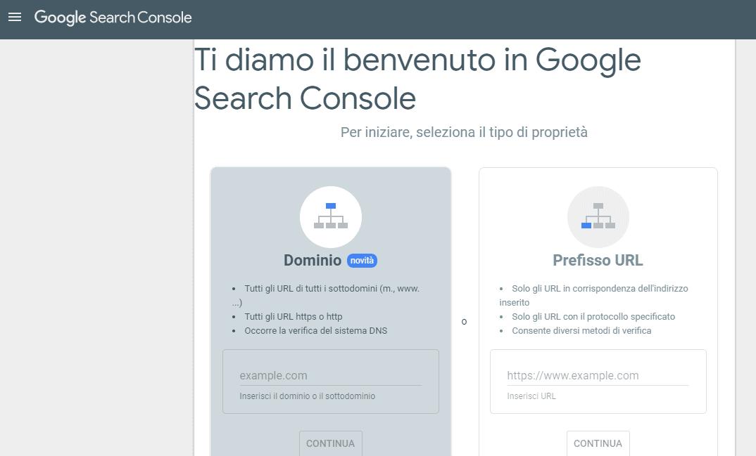 Schermata Google Search Console